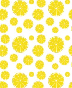 Lemon Slices ~ 64635641 ~ Ceramic Decal ~ Glass Decal ~ LEAD FREE & Food Safe ~ Waterslide Decal Transfer ~ 3 Sizes