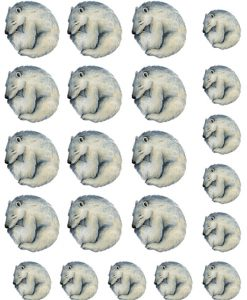 Sleeping Polar Bears  ~ 452647420 ~ Ceramic Decal - Glass Decal ~ Waterslide Decal Transfer ~Lead Free & Food Safe - 3 Sizes to Choose From